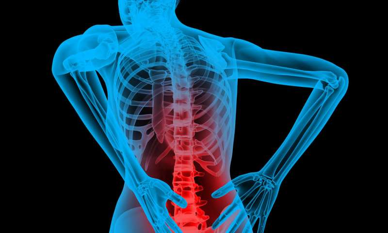Healthcare Clinicians In Sydney Prefer Data Analytics To Cure Back Pain