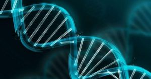 Antisense and RNAi Therapeutics
